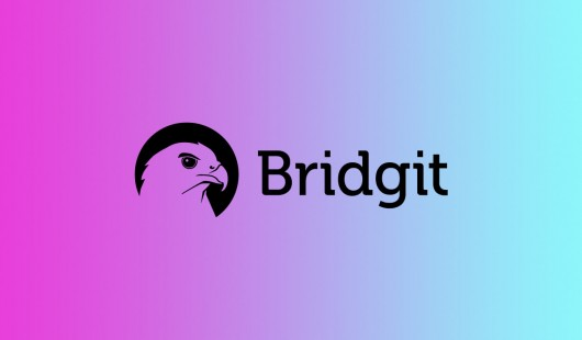 Bridgit