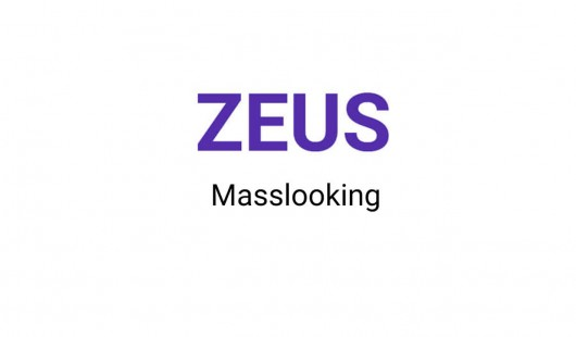 Zeus масслукинг